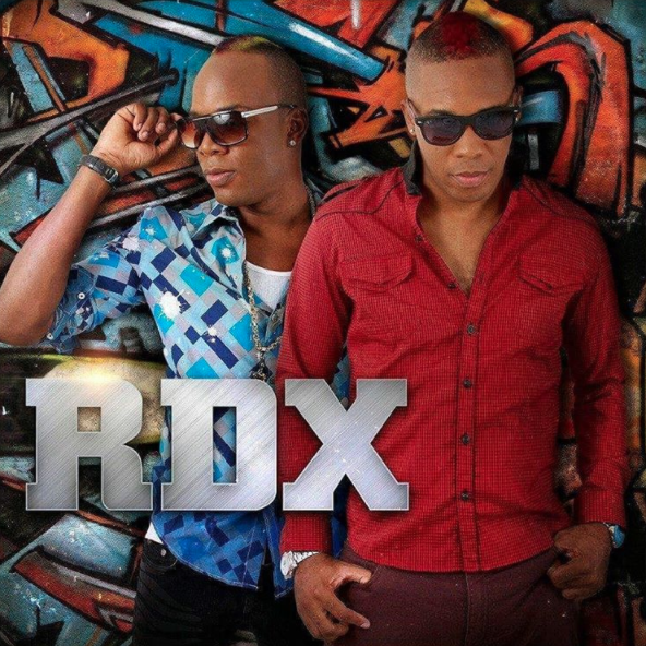 RDX not fond of the viral video involving an overly-acrobatic pregnant woman dancing to 'Jump'
